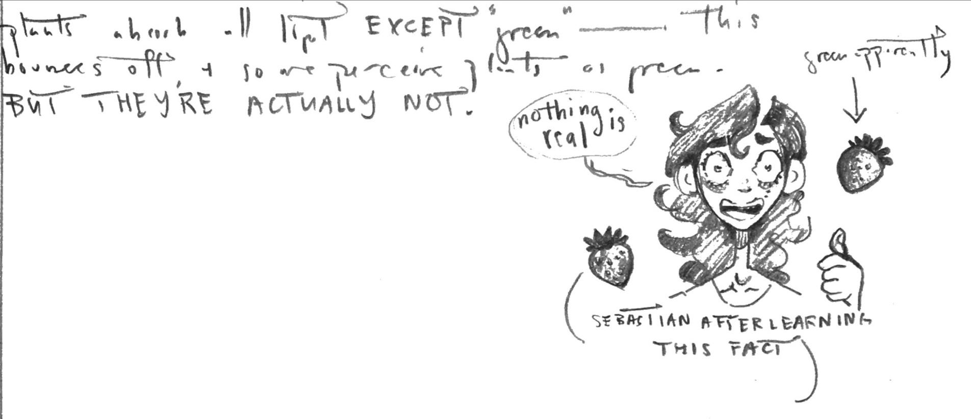 Sebastian-cartoon-Globe